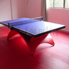 Indoor Table Tennis Table FDL-D010